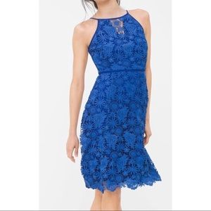 WHBM Royal Blue Fit-And-Flare Dress
